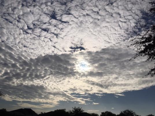 Like sheep in the sky